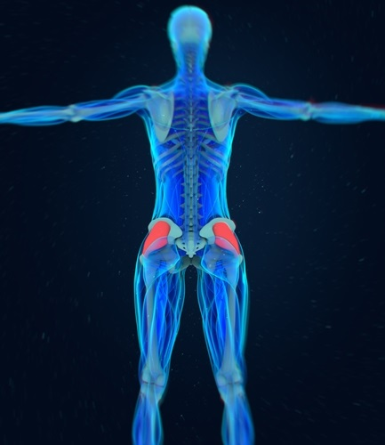Why Is Fascia Important to Your Health?